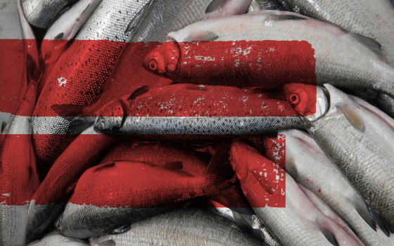 Sustainable fisheries make economic sense