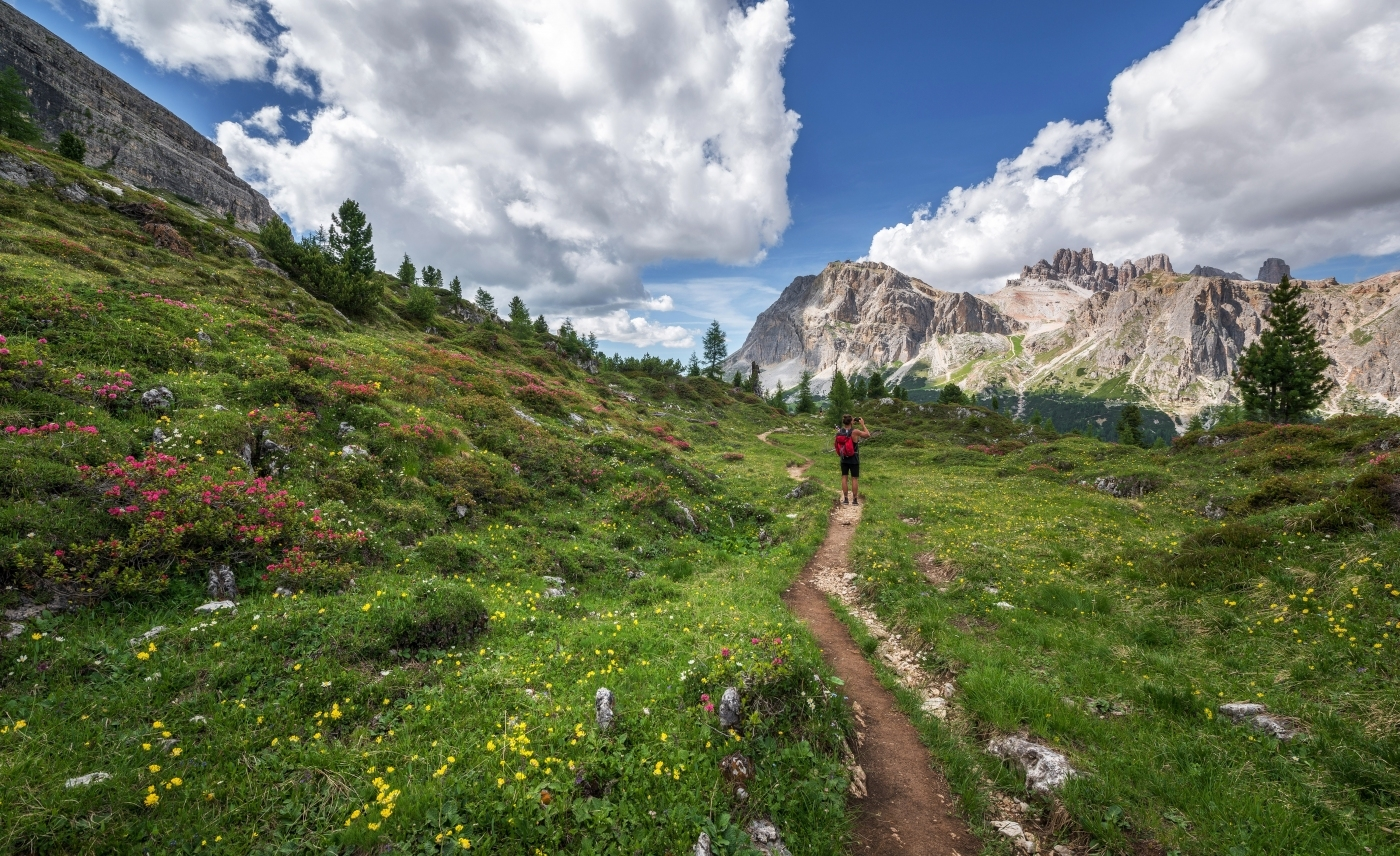 Woman walking through wildflowers in the Alps.